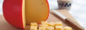 edlong-analog-cheese